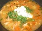 Polish Chicken Noodle Soup