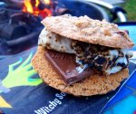 Oatmeal Chocolate Chip Raisin Cookie S'mores
