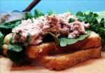 Tuna Salad Sandwich With a Bite!