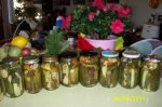 Homemade Canned Dill Pickles