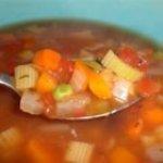 Vegetable Salsa Soup