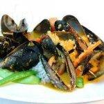 Mussels in Korma Sauce