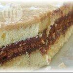 Chocolate and Vanilla Neapolitan
